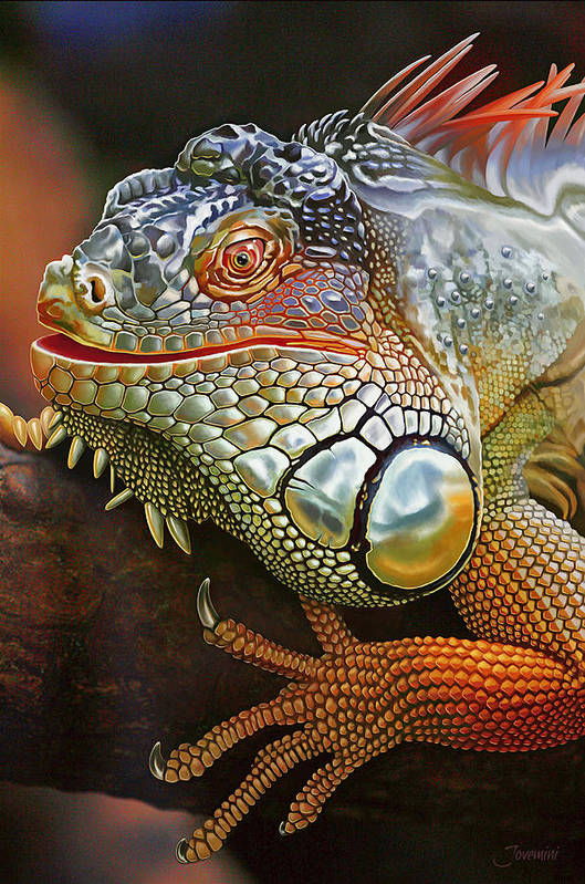 Drawing Art Print featuring the painting Iguana Full Of Color by Jovemini ART