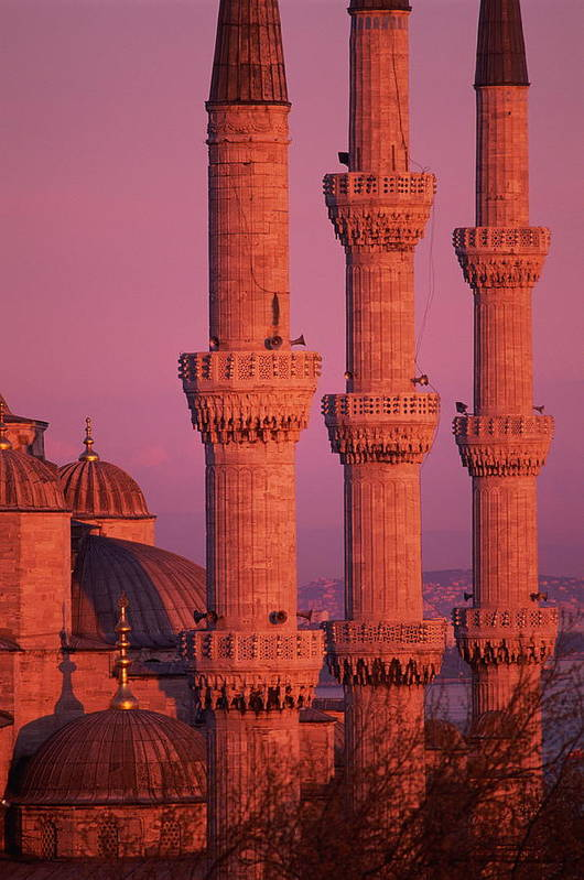 Vertical Art Print featuring the photograph Istanbul, Turkey, Blue Mosque by Grant Faint