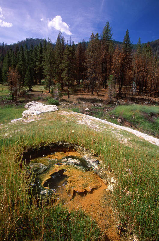 Jordan Hot Springs Art Print featuring the photograph Jordan Hot Springs by Soli Deo Gloria Wilderness And Wildlife Photography