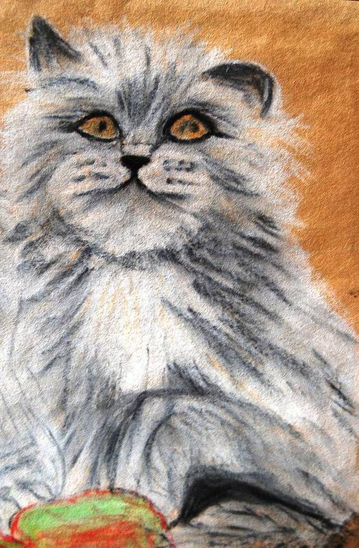 White And Grey Persian Cat Art Print featuring the mixed media Persian Cat by Angela Murray