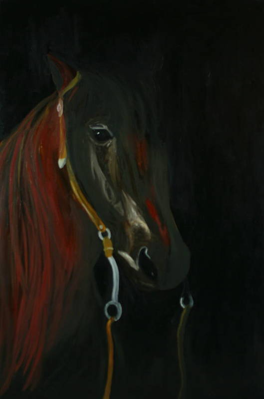 Horse Art Print featuring the painting Shadow by Karen Rester