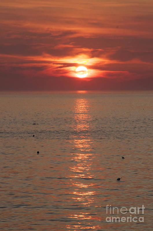 Sunrise Ocean Art Print featuring the photograph Summer Sunrise Rockport, Ma by Michael Mooney