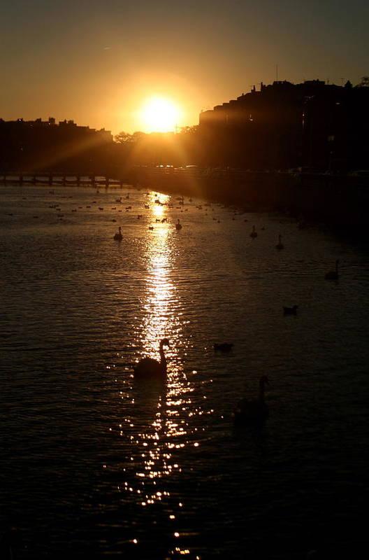 Sunset Art Print featuring the photograph Sun Setting In Sheepshead Bay by Jason Hochman