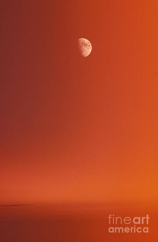 Above Art Print featuring the photograph Sunset And Half Moon by Carl Shaneff - Printscapes