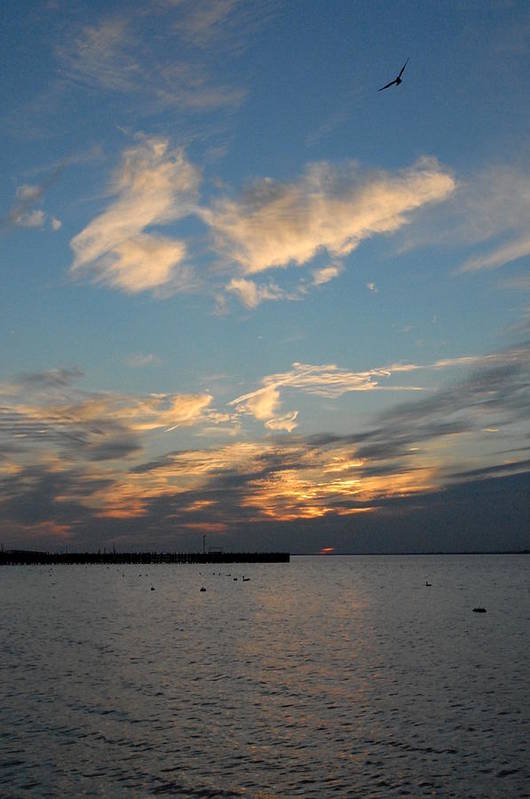 Bay Photographs Art Print featuring the photograph sunset Bay 19 by Joyce StJames