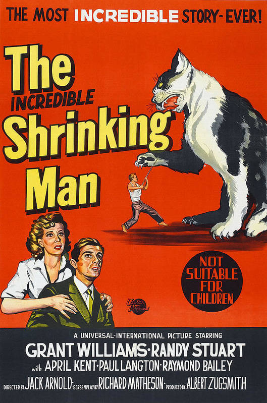 1950s Poster Art Print featuring the photograph The Incredible Shrinking Man, Bottom by Everett