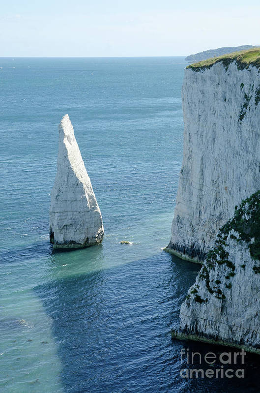 Stack Art Print featuring the photograph The Pinnacle Stack Of White Chalk On The Isle Of Purbeck Dorset England Uk by Andy Smy