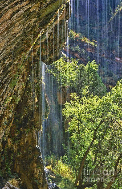 Southwest Art Print featuring the photograph Weeping Rock - Zion Canyon by Sandra Bronstein