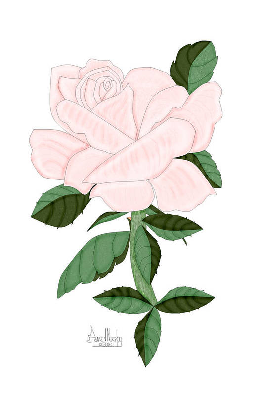 Pink Rose Art Print featuring the painting Winter Blush Rose by Anne Norskog