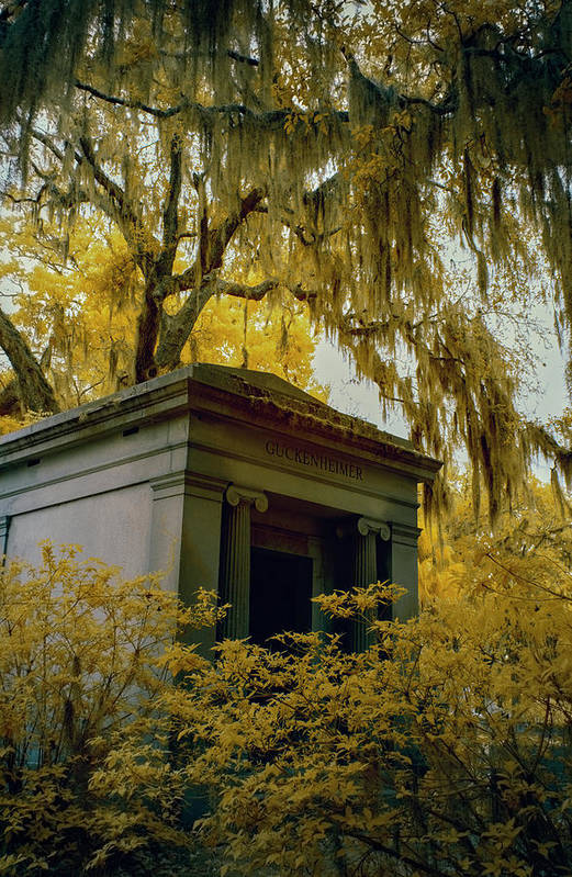 Cemetary Art Print featuring the photograph Mausoleum In Georgia by Jon Glaser
