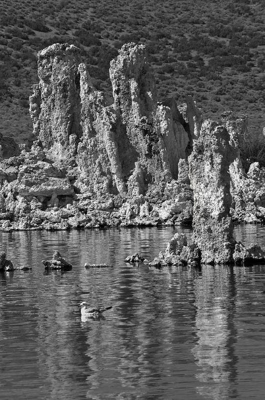 High Sierra Art Print featuring the photograph Mono Lake Tufa Formations by Scott Lenhart