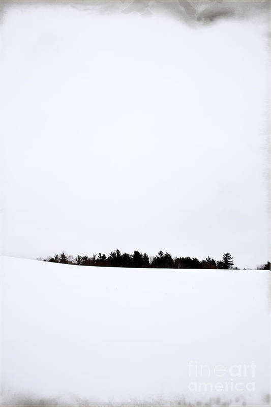 Winter Art Print featuring the photograph Winter Minimalism by Edward Fielding