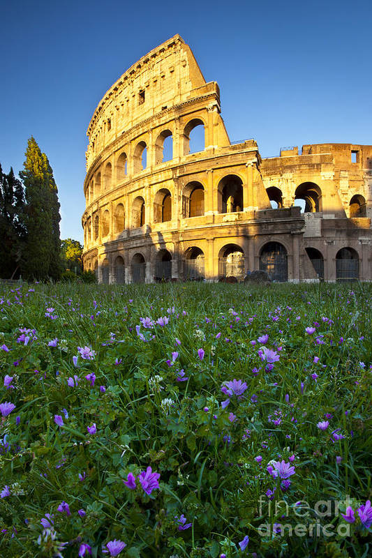 Roman Art Print featuring the photograph Flowers At The Coliseum by Brian Jannsen