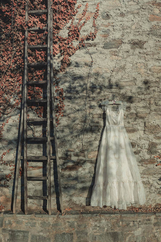 Dress Print featuring the photograph Wedding Dress by Joana Kruse