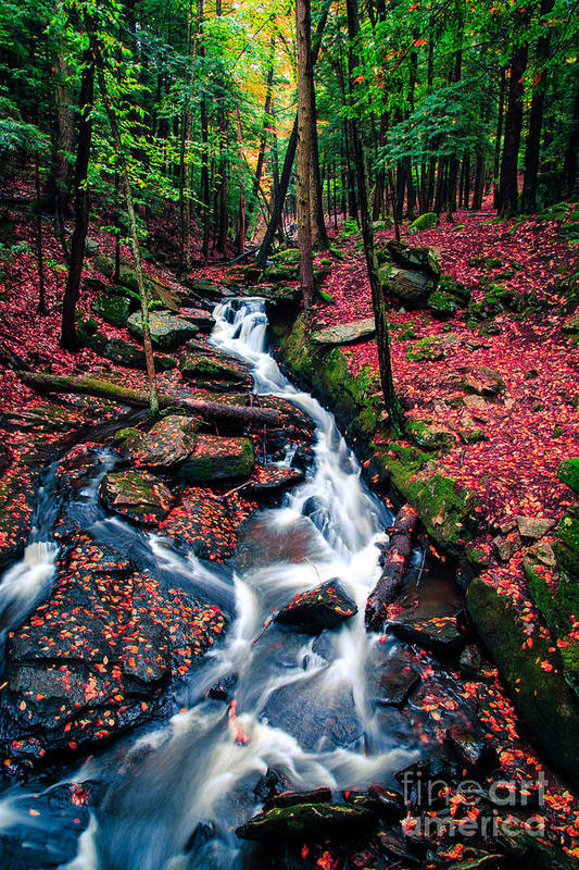 Waterfall Print featuring the photograph Chesterfield Gorge New Hampshire by Edward Fielding