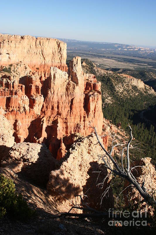 Canyon Art Print featuring the photograph Bryce Canyon by Christiane Schulze Art And Photography