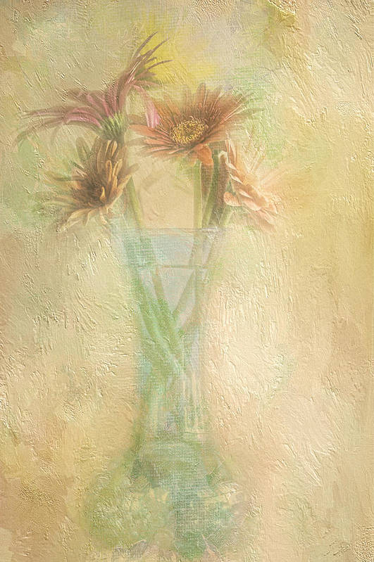 Daisies Art Print featuring the photograph A Vase Of Gerbera Daisies In The Sun by Diane Schuster