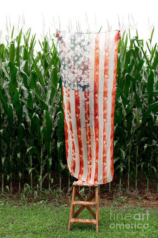 American Flag Art Print featuring the photograph American Flag And A Field Of Corn by Kim Fearheiley