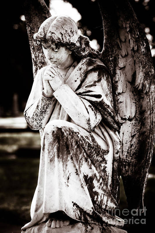 Angel Art Print featuring the photograph Angel In Prayer by Sonja Quintero