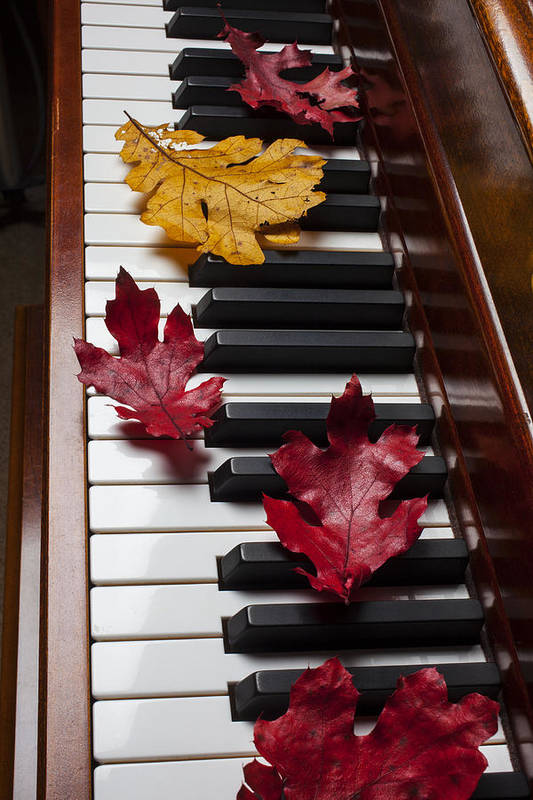 Red Art Print featuring the photograph Autumn Leaves On Piano by Garry Gay
