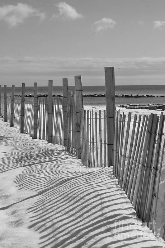 Snow Art Print featuring the photograph Beach Snow by Catherine Reusch Daley