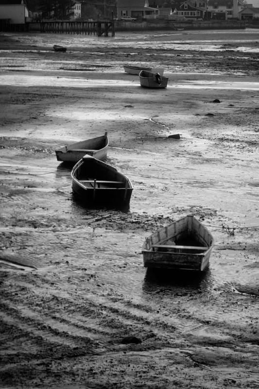 Rowboat Art Print featuring the photograph Beached Boats by Gary Slawsky