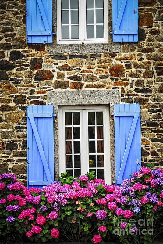 House Art Print featuring the photograph Blue Shutters by Elena Elisseeva