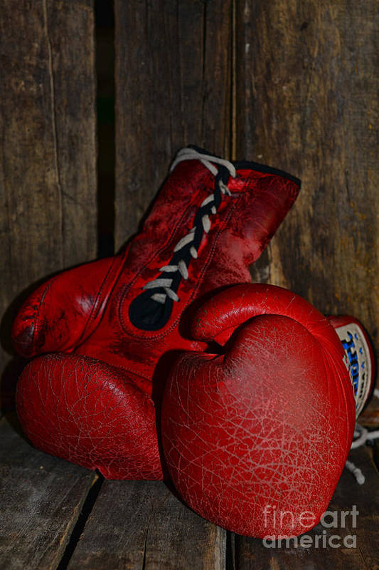 Paul Ward Art Print featuring the photograph Boxing Gloves Worn Out by Paul Ward