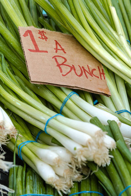 Bunches Art Print featuring the photograph Bunches Of Onions by Teri Virbickis