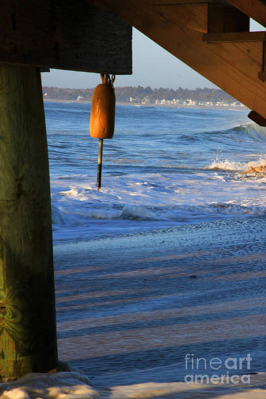 Maine Art Print featuring the photograph Buoy 1 by Michael Mooney