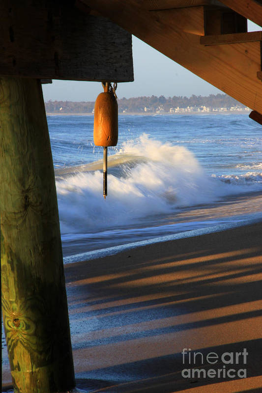 Maine Art Print featuring the photograph Buoy 2 by Michael Mooney