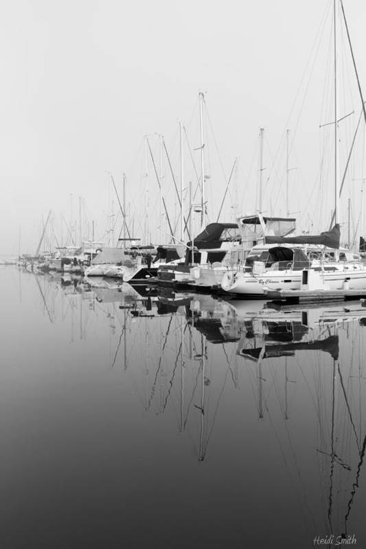 Anchored Art Print featuring the photograph By Chance by Heidi Smith