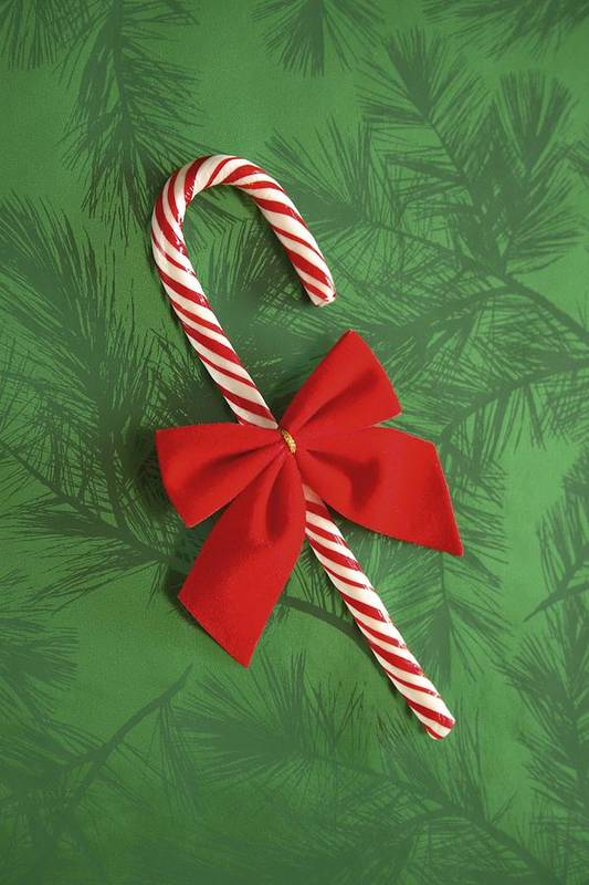 Candy-cane Art Print featuring the photograph Candy Cane by Colette Scharf