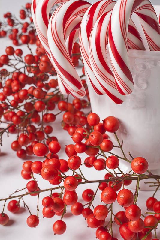 Candy Canes And Red Berries Art Print by Garry Gay