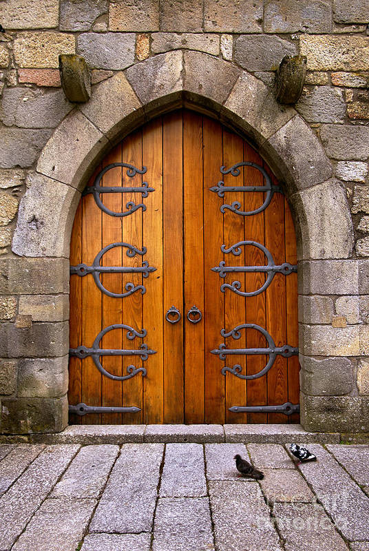 Ancient Art Print featuring the photograph Castle Door by Carlos Caetano