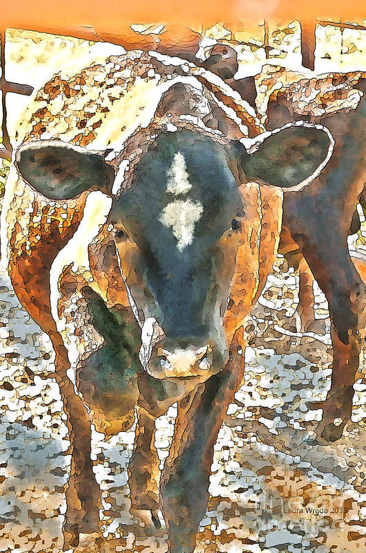 Cow Art Art Print featuring the photograph Cattle Round Up by Artist and Photographer Laura Wrede
