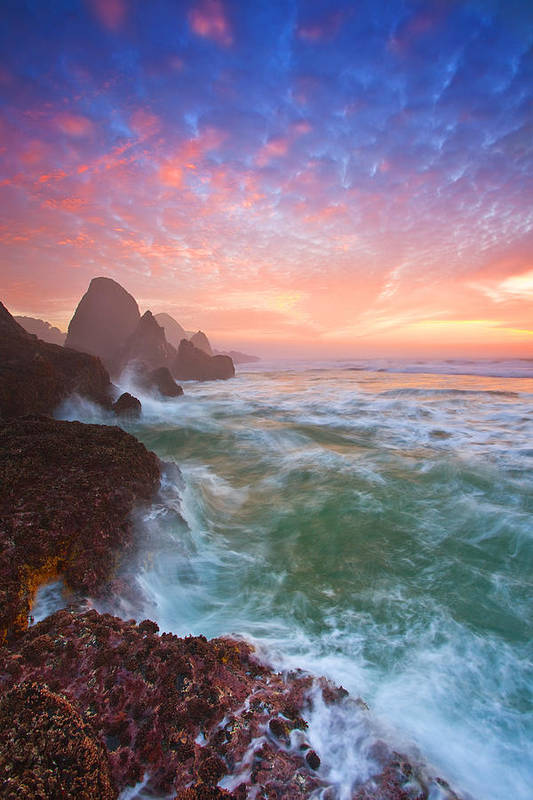 Oregon Art Print featuring the photograph Christmas Eve Sunset by Darren White
