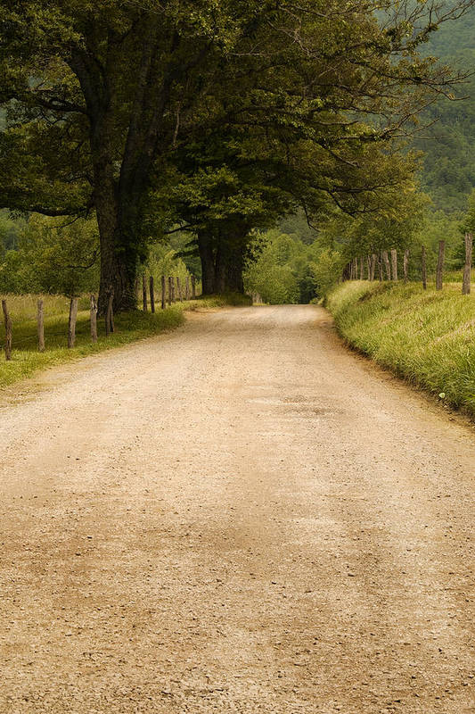 Cades Cove Art Print featuring the photograph Country Lane - Smoky Mountains by Andrew Soundarajan