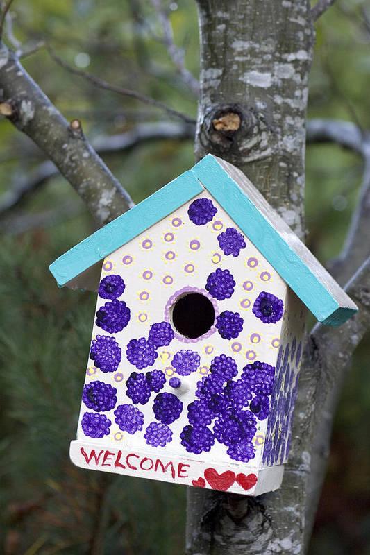 Birdhouse Print featuring the photograph Cute Little Birdhouse by Carol Leigh