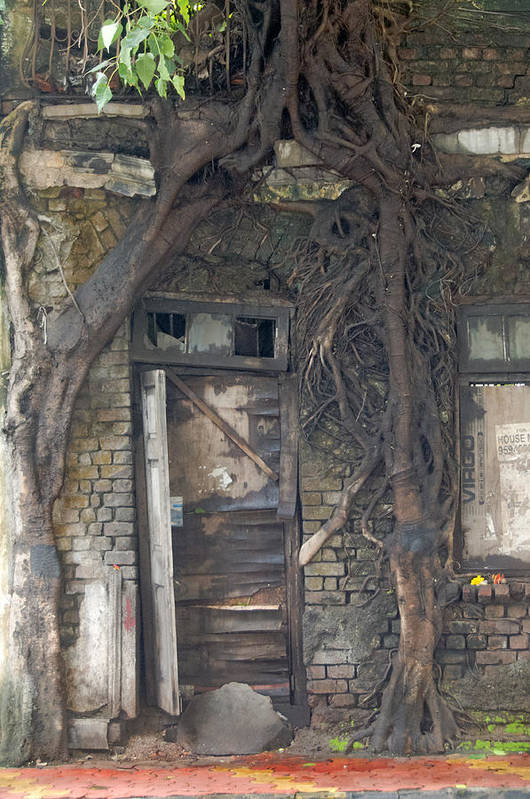 Mumbai Art Print featuring the photograph Dying Days Of An Old Building by Scott Lenhart