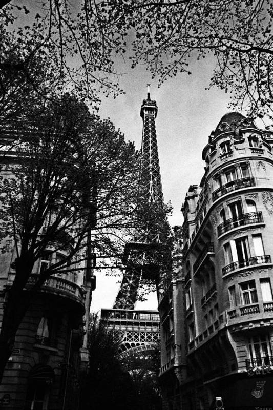 Paris Art Print featuring the photograph Eiffel Tower Black And White by Andrew Fare
