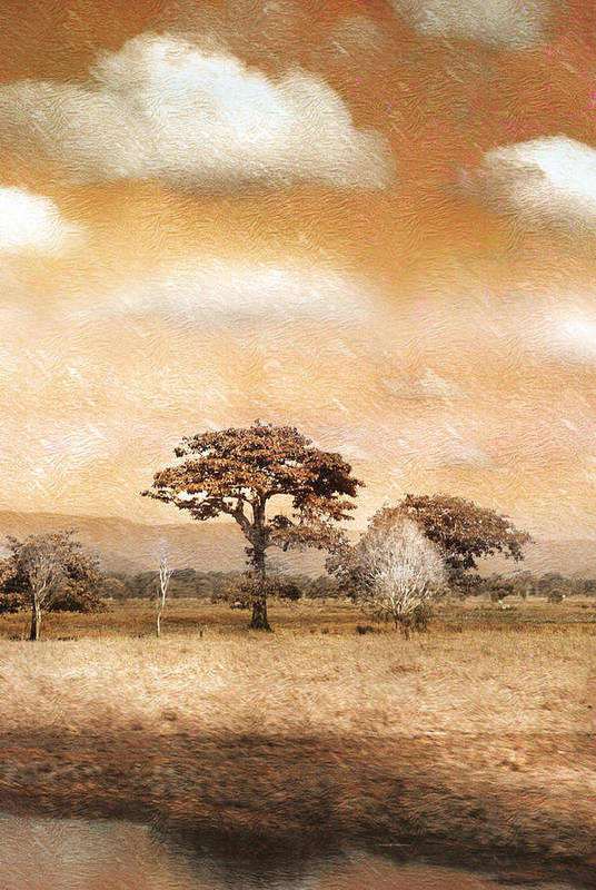 Landscapes Art Print featuring the photograph Evening Showers by Holly Kempe