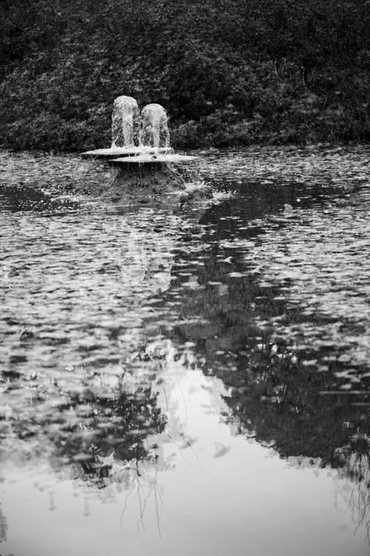 Fall Fountains Art Print featuring the photograph Fall Fountains - Beacon Hill Park by Deborah McCarron