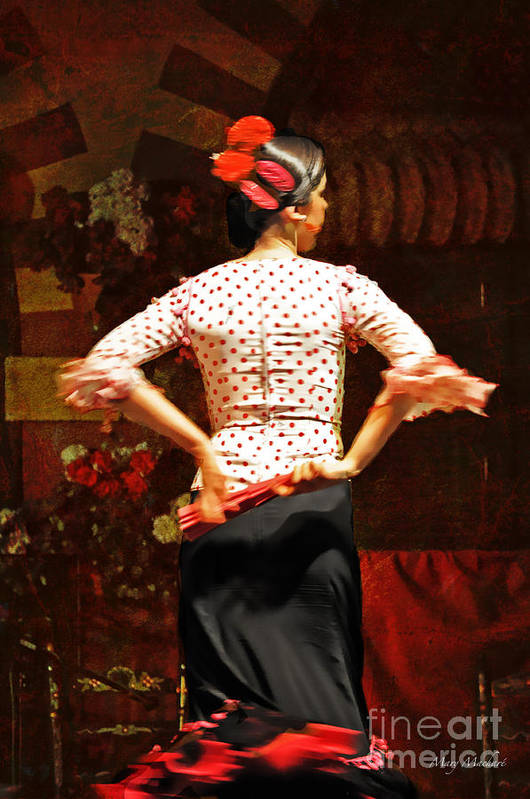 Flamenco Art Print featuring the photograph Flamenco Series #5 by Mary Machare