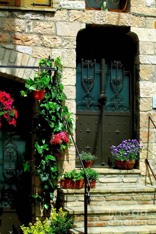 Flowers Art Print featuring the photograph Flowers 4-assisi by Theresa Ramos-DuVon