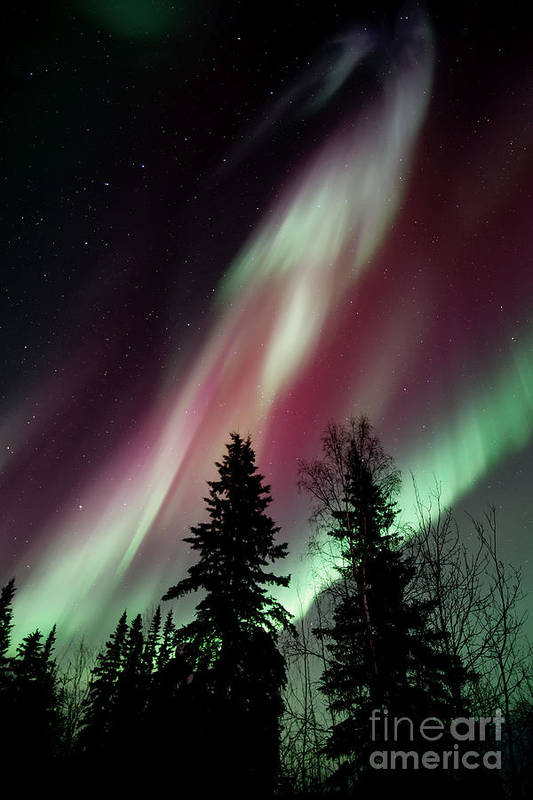 Northern Light Art Print featuring the photograph Flowing Colours by Priska Wettstein