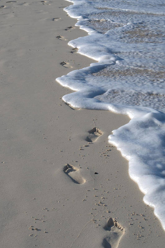 Caribbean Art Print featuring the photograph Footprints In The Sand by Caroline Stella