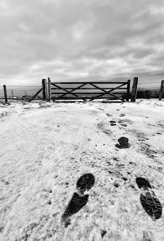 Black And White. Mono. Monochromatic Art Print featuring the photograph Footprints In The Snow by John Farnan