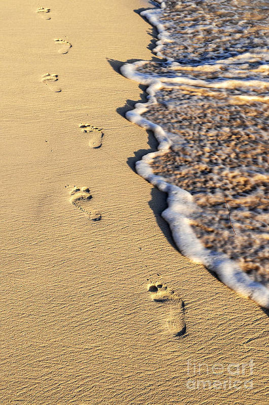 Footprints Art Print featuring the photograph Footprints On Beach by Elena Elisseeva