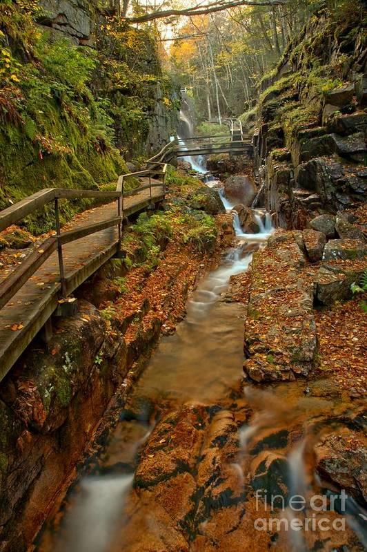 Flume Gorge Art Print featuring the photograph Franconia Notch Lush Greens And Rushing Waters by Adam Jewell